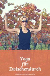 Yoga für Zwischendurch - im Büro, Zuhause und auch beim Wandern oder auf Reisen