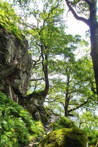 Wandern Loch Lomond
