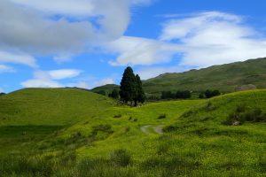 West Highalnd Way