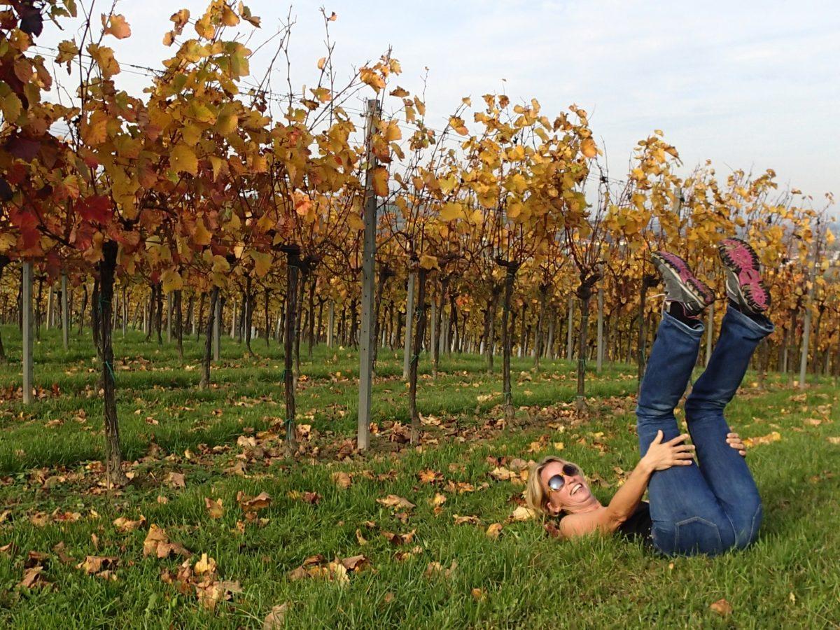 Yoga im Weingarten
